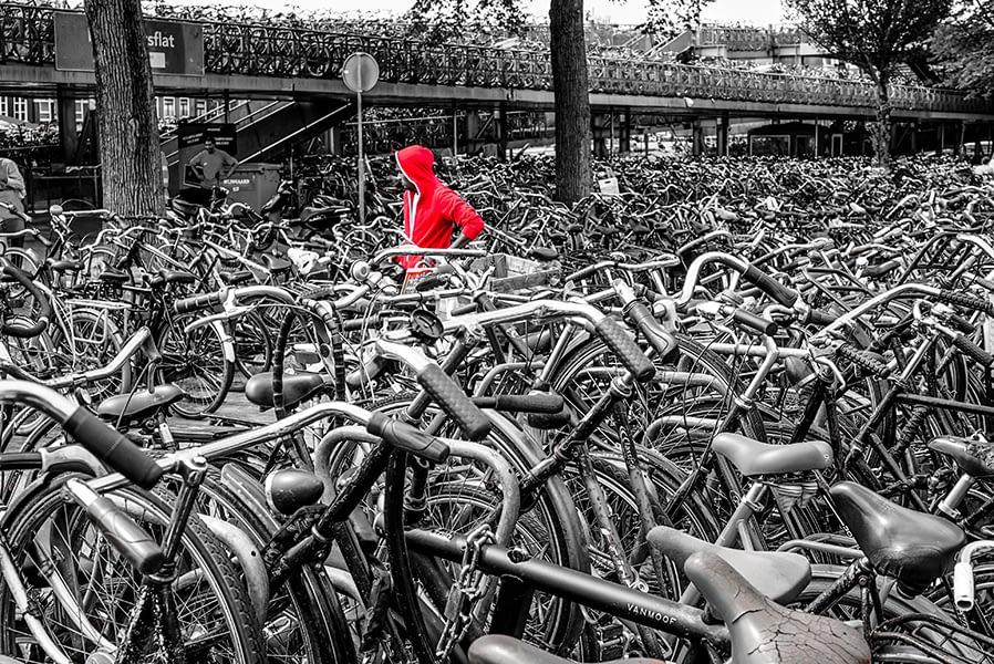 Dude, Where's My Bike